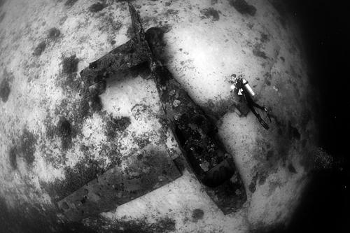 11 광각금상 남호진 모알보알-61k.jpg